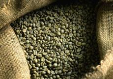 Giá cà phê trong nước ngày 29/09/2016 vẫn ở mức 41,3 - 41,9 triệu đồng/tấn